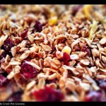 Homemade Granola in a Slow Cooker {Recipe ReDux}